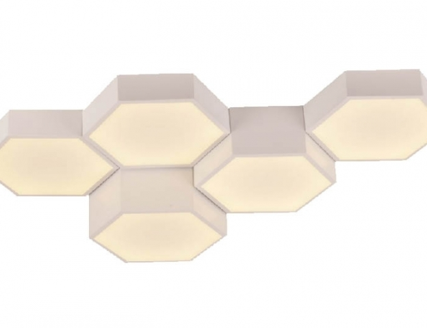 LED Light HONEY/5